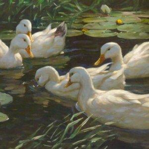 Alexander Koester, Gemälde, Enten im Seerosenteich