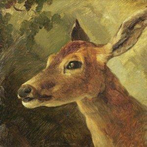 Friedrich Gauermann, Gemälde, Hirschkuh