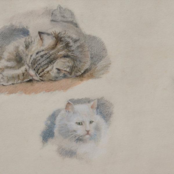Marie Egner, Katzen