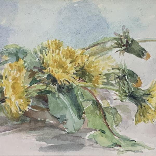 Marie Egner, Löwenzahn